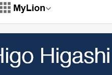 my lion 見出し